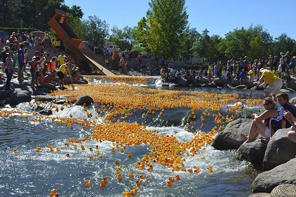 Breckenridge Duck Races, Breckenridge, CO