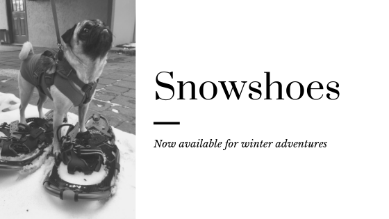 Snowshoes Now Available.png
