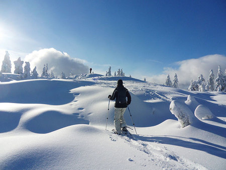 Colorado-Snowshoeing