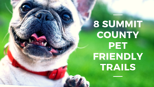 8 Summit County Pet Friendly Trails